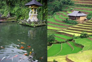 Endonezya Bali Seyahati